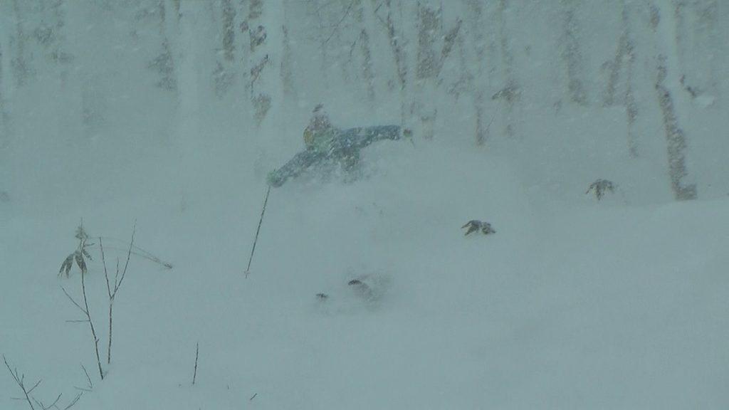 スノーボード パウダー