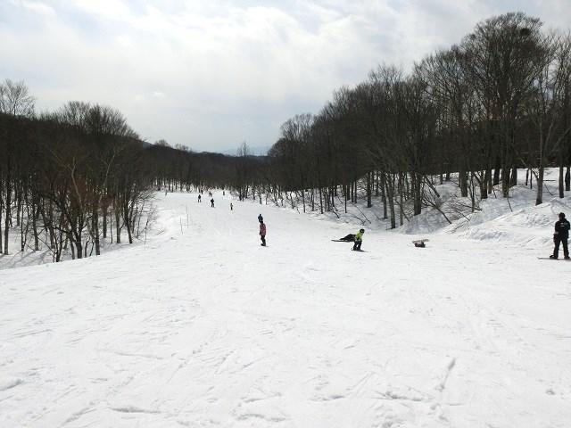 スキー場、初心者コース