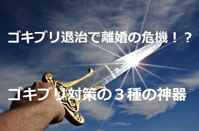剣、戦い、空、ゴキブリ対策